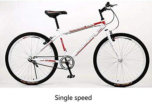 JAEJLQY Bicicleta de Montaña Bicicleta 21 velocidades 26 Pulgadas ...