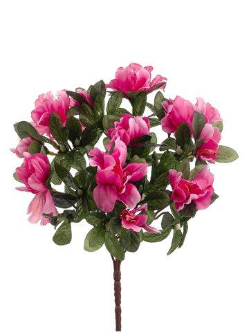 13-Azalea-Bush-x7-Hot-Pink-Pack-of-36