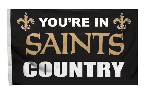 Fremont Die NFL New Orleans Saints 3-by-5 Foot In Country Flag
