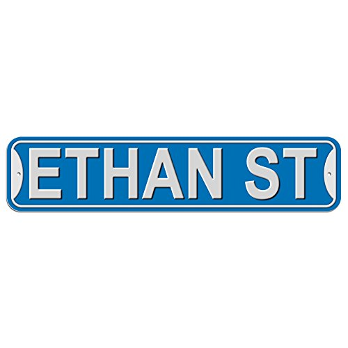 Ethan St Street Sign - Plastic Wall Door Street Road Male Name - Blue
