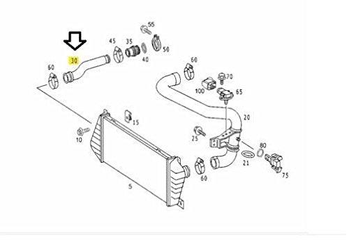CDI Turbo Intercooler manguera de aire Mercedes Sprinter Dodge 2500/3500 95 - 06 bg50007: Amazon.es: Coche y moto