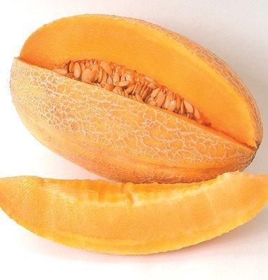 David's Garden Seeds Fruit Cantaloupe Sweet Granite D459 (Orange) 50 Organic Seeds