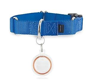 PetSafe SmartDoor Plus Key for PetSafe SmartDoor Plus and Passport Pet Doors