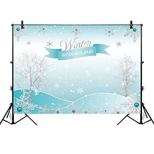 Allenjoy 8x6ft Winter Wonderland Theme Backdrop for Girl Sweet 16 Sixteen 1st Birthday Party Banner Festival Ice Blue Background Children Family Photo Shoot