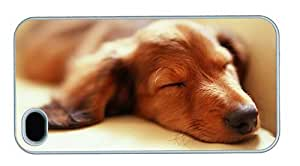 Hipster awesome iPhone 4S case sleeping dachshund PC White for Apple iPhone 4/4S