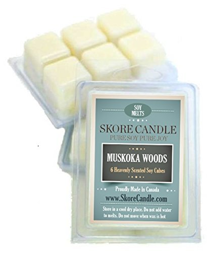 Skore Candle MUSKOKA WOODS Scented Soy Melts 2 pack-Made in Canada with 100% pure natural soy wax-12 Large Aromatherapy Cubes-Create beautiful scents in your living & dining room while eliminating kitchen & home odors. Use in your fav wax warmer