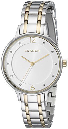 Skagen Women's SKW2321 Anita Two Tone Silver and Gold Link (2 Tone Gold Link)