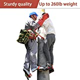 Ozzptuu Tree Climbing Spikes with Safety