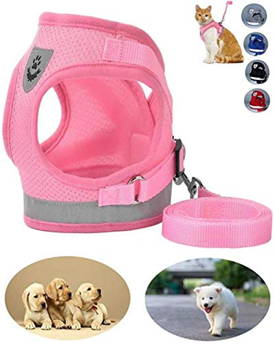 GAUTERF Dog and Cat Universal Harness with Leash Set, Escape Proof Cat Harnesses - Adjustable Reflective Soft Mesh Corduroy Dog Harnesses - Best Pet Supplies from GAUTERF