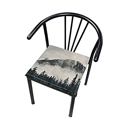 Bardic HNTGHX Outdoor/Indoor Chair Cushion Forest Tree Foggy Square Memory Foam Seat Pads Cushion for Patio Dining, 16