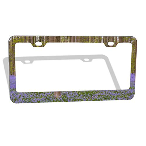 - Sootot Forest-Flowers-Wild-Hyacinth-Hallerbos-Bluebell License Plate Frame Premium Quality License Plate Cover Frame (2 Holes-2Pcs)