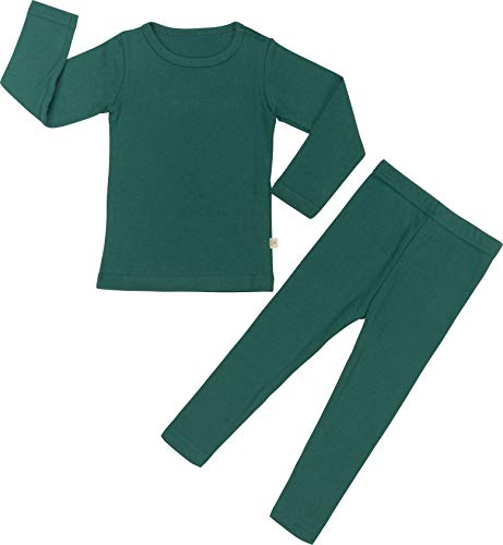 Baby Boys Girls Pajama Set 6M-8T Kids Cute Toddler Snug fit Pjs Cotton Sleepwear (Green-2 Large(100)/3T)
