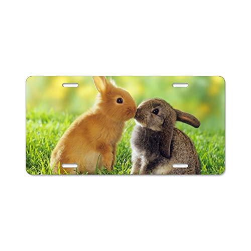 Ohio State Alumni Bar - SUJQNGC Cute Brown Bunny Rabbit Standard Alumina License Plate Frame