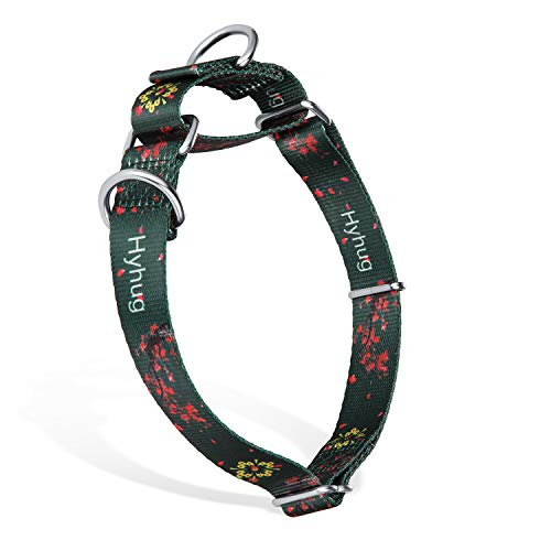 Premium Upgraded Strong Martingale Dog Collar for Puppyhood Boy and Girl Dogs Comfy and Safer, Daily Use - Double Ring Attached ID Tags / Martingale Collar / Basic Collar. (Small, Green Plum Flower)