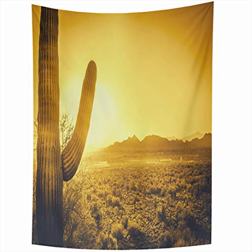 (Ahawoso Tapestry 60x90 Inch Parks Orange Phoenix Epic Desert Sunset Over Valley Cacti Sun Arizona Tempe Scottsdale Cactus Heat Sky Wall Hanging Home Decor for Living Room Bedroom Dorm)