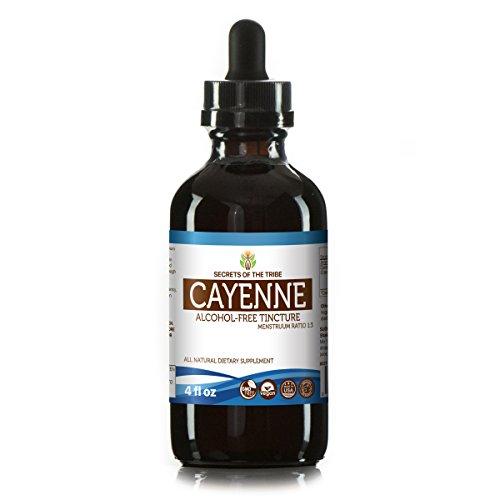 Cayenne Alcohol-FREE Liquid Extract, Organic Cayenne (Capsicum annuum) Dried Pepper Tincture Supplement (4 FL OZ)