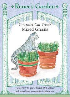 Renee's Garden Seeds Cat Treats, Gourmet, Mixed Greens