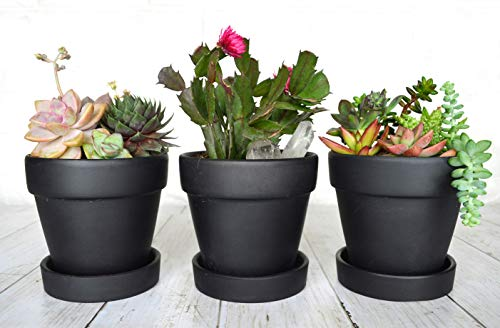 """(My Urban Crafts Indoor Plant Pots 4"""" Modern Terra Cotta Clay Flower Pots with Saucer Ceramic Pottery Planter- Great for House Plants, Cactus Succulent Pot, Windowsill Herb Garden (3-Pack, Matte Black))"""