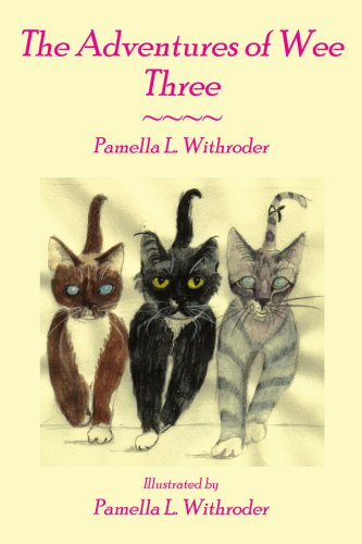 The Adventures of Wee Three pdf