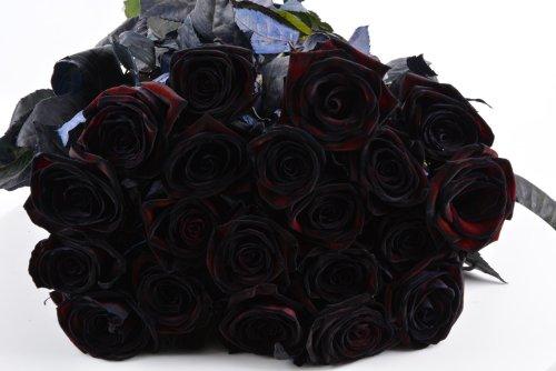 Blumenversand - Blumenstrauß Gothic - schwarze Rosen - 20 Stück - Black Roses - dunkel schwarze Rosen - mit Gratis - Grußkarte zum Wunschtermin verschicken