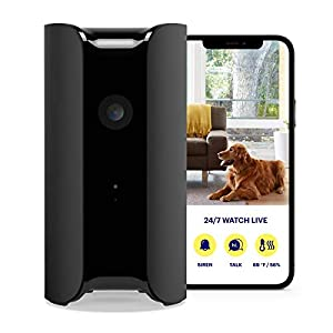 Flashandfocus.com 41ahk0U44OL._SS300_ CANARY (CAN100USBK) All-in-One Indoor 1080p HD Security Camera with Built-in Siren and Climate Monitor, Motion / Person…