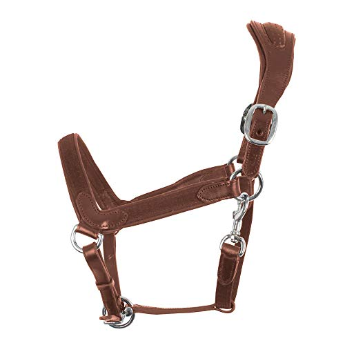 Weatherbeeta Comfitec Leather Halter (Warmblood) (Black) by Collegiate (Image #3)