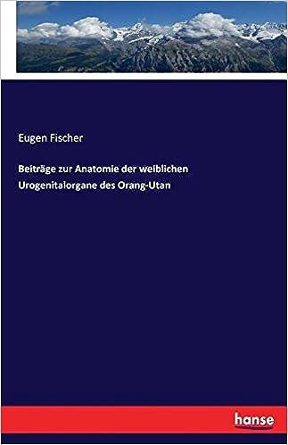 Beiträge zur Anatomie der weiblichen Urogenitalorgane des Orang-Utan ...