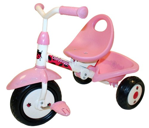 Kettler Steel Tricycle (Kiddi-o by Kettler Fold 'n Ride Trike with Adjustable Seat: LadyBuggy, Youth Ages 1.5+)