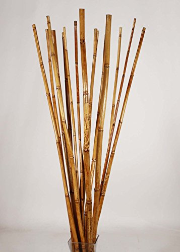 Green Floral Crafts Natural River Cane 4.5 Ft, Honey, Pack of 15 by Green Floral Crafts