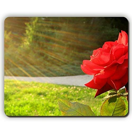 (Precision Seamed) Mouse Pad,Rose Flower Sun Rays Grass,Game Office Mousepad (Kaufen Ray)