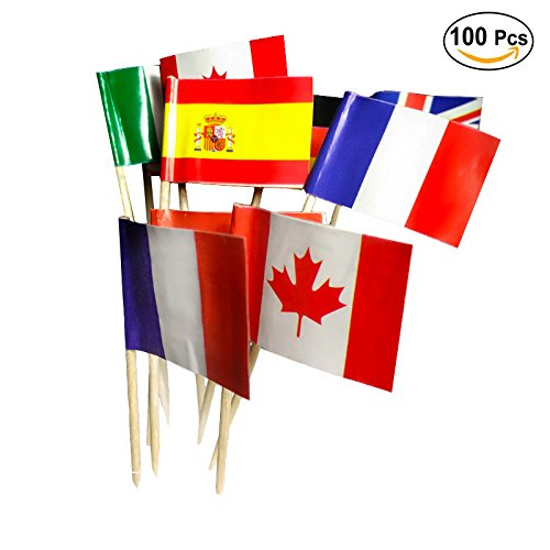 (National Flag Picks Flag Toothpicks Cocktail Sticks Cupcake Toppers, Random Country, 100 Count)