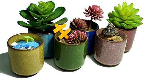 Ceramic Ice Crack Small Cute Succulent Plant Pots,Cactus Plant Pot,Flower Planter Pot with Drainage for Home and Kitchen Decoration Bright Color
