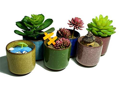 Small Plants Pots,Ceramic Ice Crack Cute Succulent Plant Pot