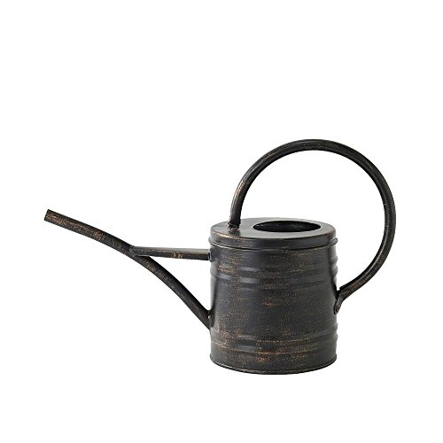 Time Concept Classical Metal Watering Can - 1.2 Liter - Antique Style Plant Tool, Home/Lawn/Garden Essential ()