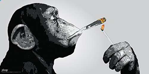 Steez Monkey Smoking a Joint Decorative Music Urban Graffiti Art Print (Unframed 12x24 Poster)