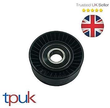 Transnit Conectar FOCUS - Tensor para ventilador de coche (1,8 TDDI TDCI): Amazon.es: Coche y moto