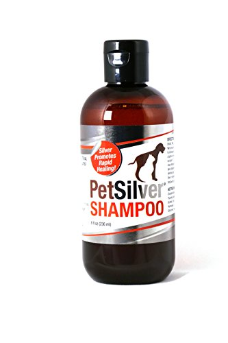 Pet Silver Shampoo with Chelated Silver for Dogs and Cats, 8 (8 Oz Cat Shampoos)