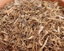 Bark 1 Ounce Herb (Herbs: White Oak Bark ~ Dried Herb ~ Ravenz Roost herbs ~ 1 oz ~ Wicca)