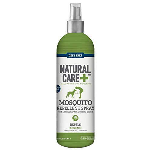 Natural Gnat Spray For Dogs