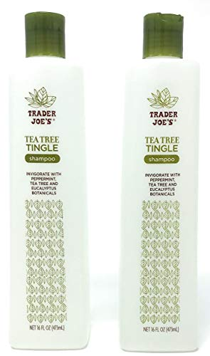 Trader Joe's Tea Tree Tingle Shampoo with Peppermint, Tea Tree and Eucalyptus Botanicals (Pack of 2) (Best Shampoo For Sisterlocks)