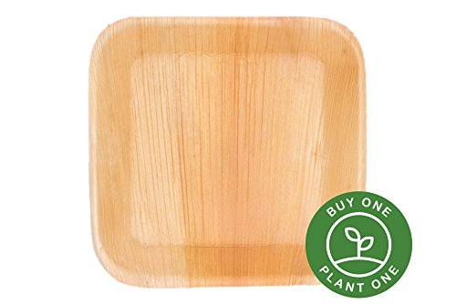 """7"""" Deep Square Palm Leaf Plates - Pack of 25 - Disposable, Compostable, Natural, Tree Free, Sustainable, Eco-Friendly - Fancy Rustic Party Dinnerware and Utensils Like Wood, Bamboo"""