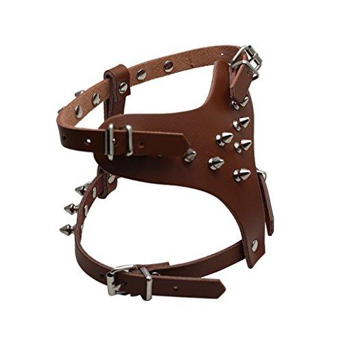 (HOOTMALL Leather Spiked Studded Harness 13.5