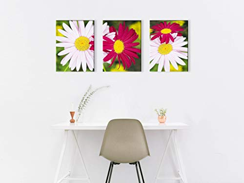 White and Red Daisies Canvas Print for Living Room Chrysanthemum Wall Art Decor Painting Pictures Artwork (12x16inch x3pcs)