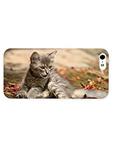 3d Full Wrap Case for iPhone 5/5s Animal Kitten Watching Bubbles77