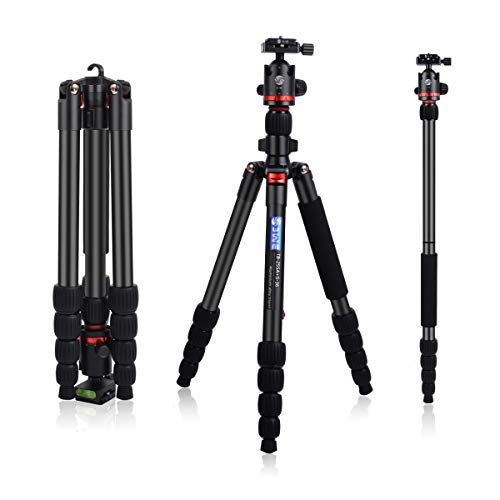 3WE 65' DSLR Tripod, Lightweight and Compact Aluminum Camera Tripod with 360 Panorama Ball Head Quick Release Plate for Travel and Work (Black)