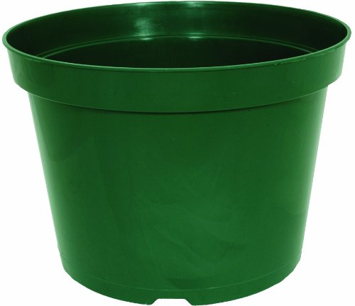 - Planters Pride AZE060030G 6-Inch Green Round Grower Pot