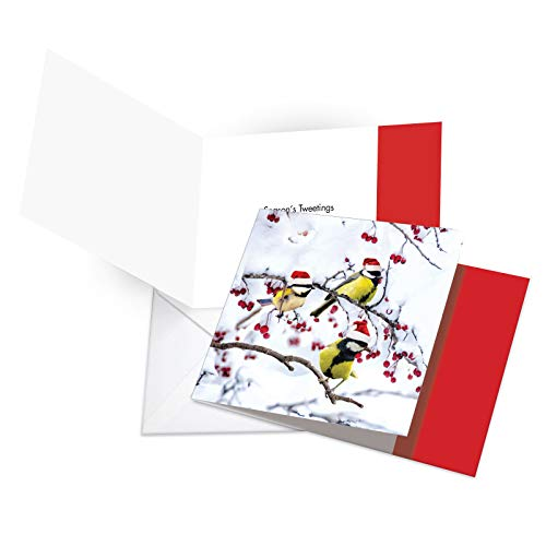 (12 'Christmas for the Birds Three Yellow' Boxed Christmas Cards with Envelopes 4.63 x 6.75 inch, Cute Birdies on Snowy Twigs Christmas Notes, Adorable Songbirds Holiday Notes CQ5030GXSG-B12)