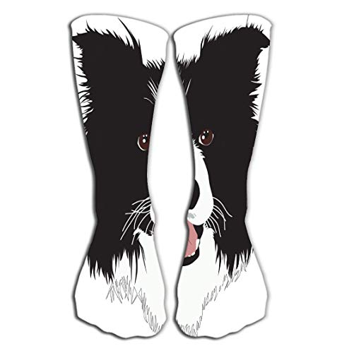 - WiNjTyMOYO Outdoor Sports Men Women High Socks Stocking Border Collie Dog Tile Length 19.7