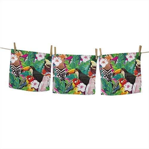 Washcloths Bath Towels 3 Pack 100% Extra Soft Cotton Wash Cloth Size 13 X 13 Soft and Absorbent Machine Washable Tropical Bird Toucan Parrot Hoopoe
