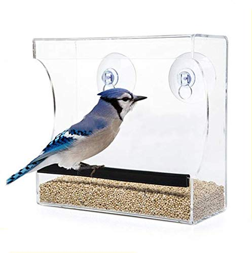 CRYSTAL CLEAR BIRD FEEDER - Suction Window Feeders Birds, Cats and Kids Love - Easy to Clean...